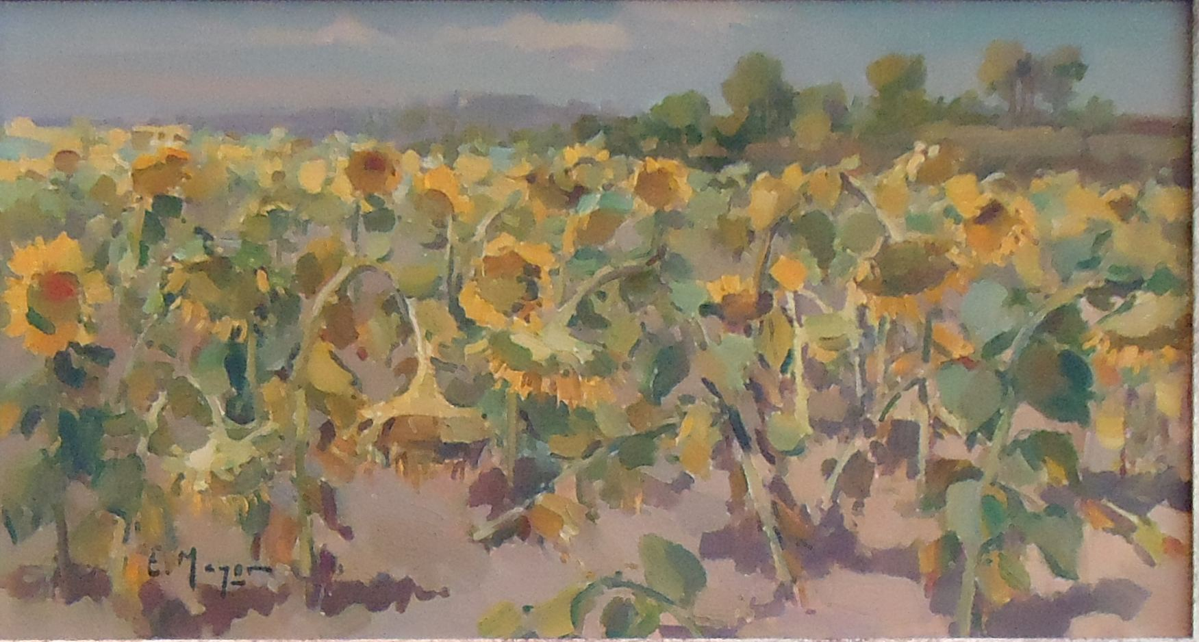 Eugenio Mayor - Girasoles